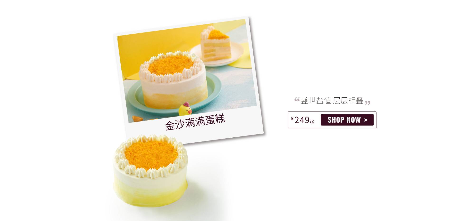 Yolk Sponge Cake