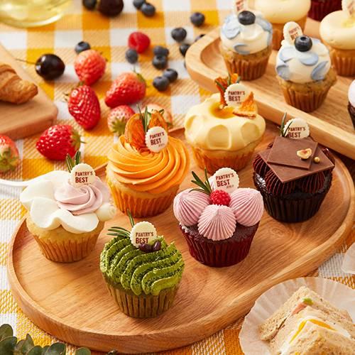 Color Palette Cupcakes Set