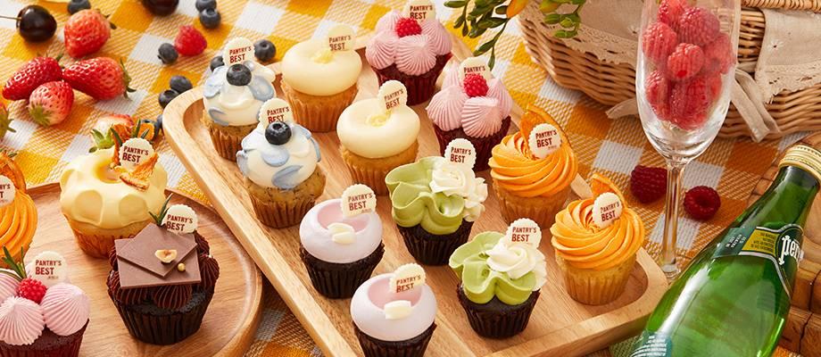 Color Palette Mini Cupcakes Set